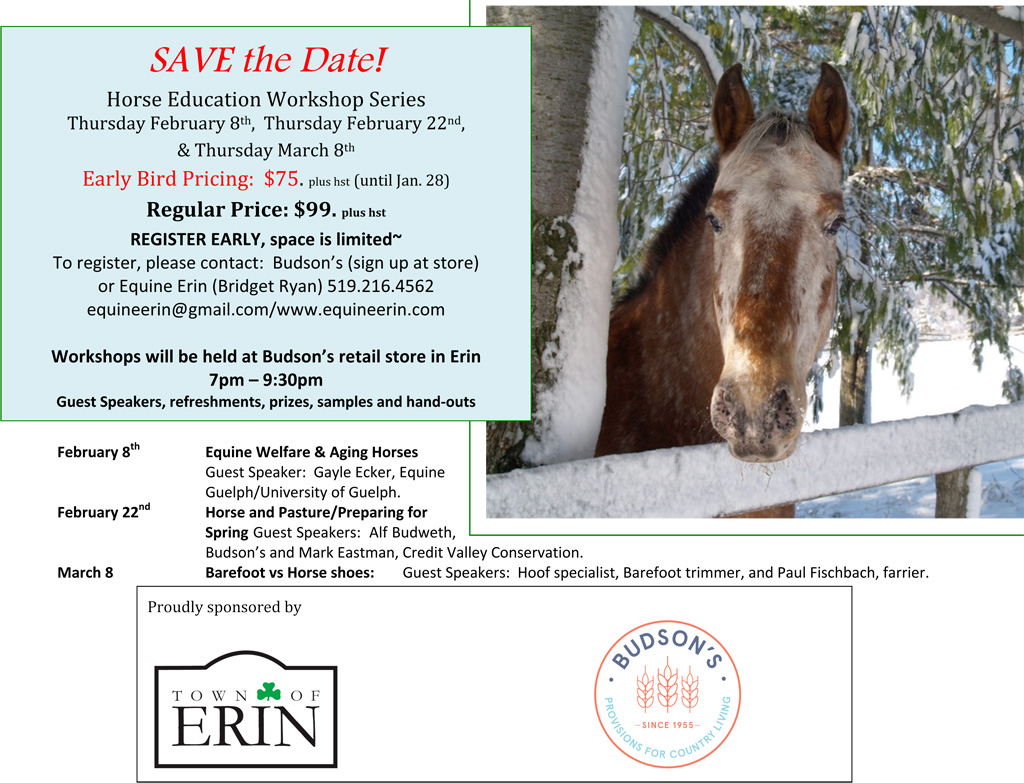 Horse Education Workshop Series 2018